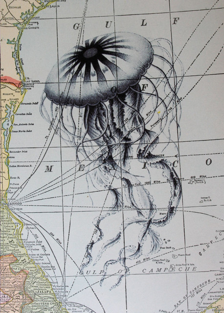 Jellyfish Print on Vintage Map Gulf of Mexico eclectic artwork