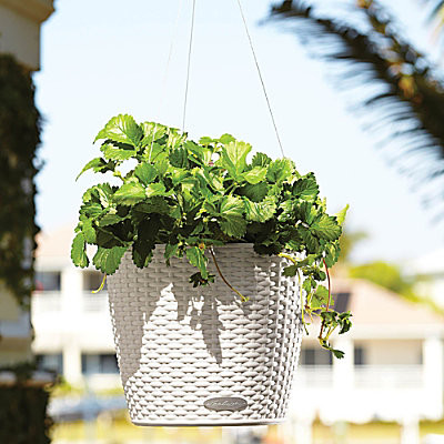 Self-Watering Hanging Planter-Woven contemporary-outdoor-pots-and-planters