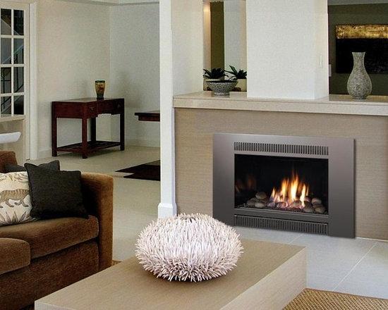 Fireplace Xtrordinair by Travis Industries - FPX 33 Basic GreenSmart Gas Insert -