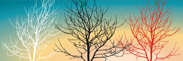 red white black tree with sky canvas pictures modern-artwork