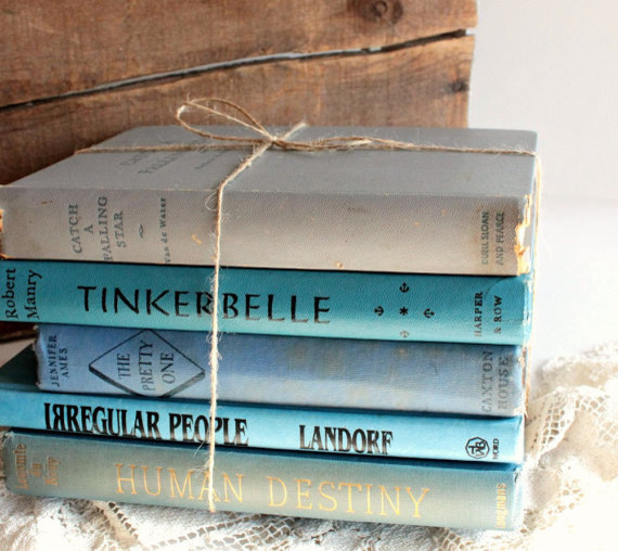 Vintage Book Bundle Shades Of Blue By Dig