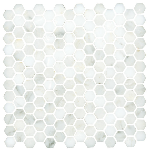 Lansdale Carrara Mosaic traditional-tile