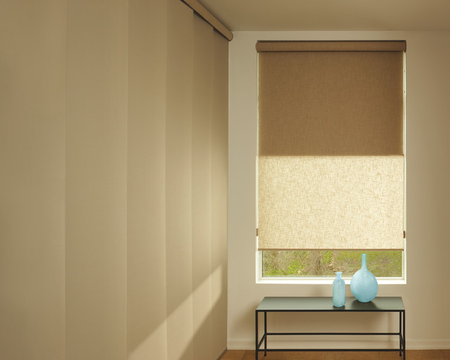 Hunter Douglas Shades - Roller Shades - tampa - by Equinox Interiors