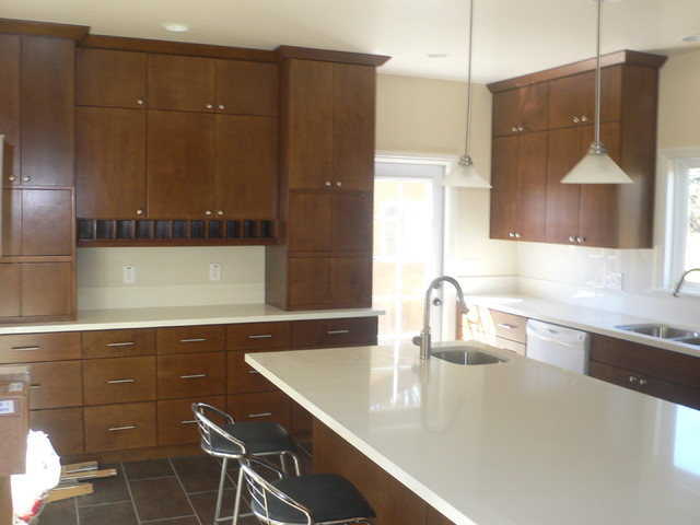 New Construction in Los Angeles contemporary-kitchen