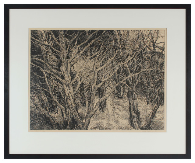 1970s Streaming Cypress by Patricia Tobacco Forrester Original Framed Etching traditional-fine-art-prints