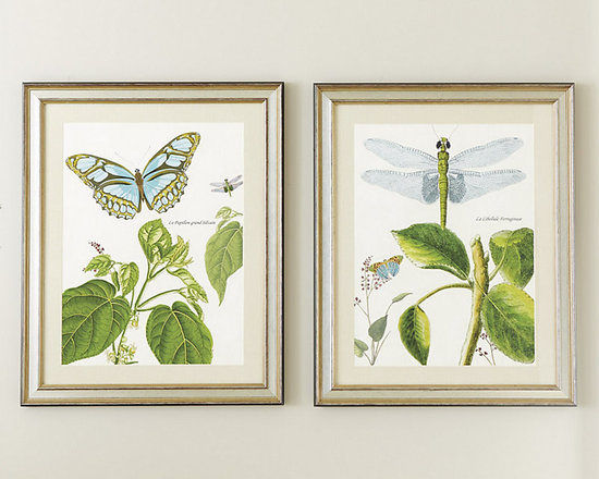Ballard Designs - Garden Whimsy Art - Natural linen mat. Antique gold & silver wood frame. Espresso edge. Glass front. A reminder of spring to enjoy all year round. These lushly colored butterfly and dragonfly studies were inspired by hand-colored 19th century bookplates. Each is digitally reproduced on fine art paper in vivid tones of garden green and mineral blue.Garden Whimsy Framed Art features:. . . .