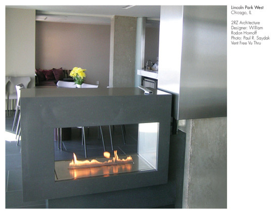 Spark Modern Fires - Fire Ribbon Vent Free 54 | 3 ft Vu Thru/Stainless, W/ Stain modern-indoor-fireplaces