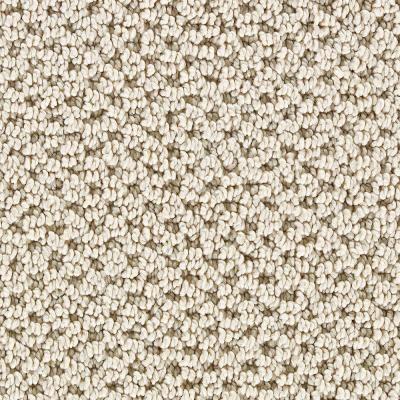 Mount vernon sisal 6 in x 9 in take home sample 896207 for Sisal carpet home depot
