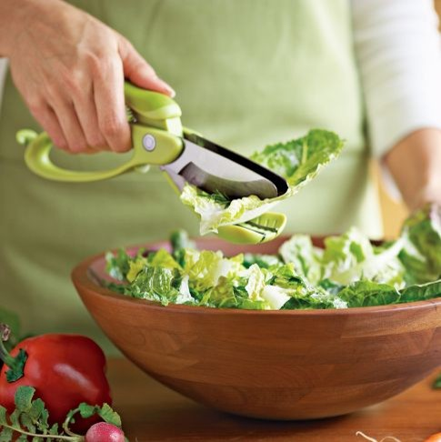 Toss & Chop Salad Scissors contemporary kitchen tools