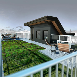 Narrow Passive House Green Roof Contemporary