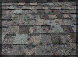 Fort Worth Roofing Contractor