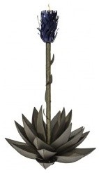BLUE AGAVE outdoor-lighting