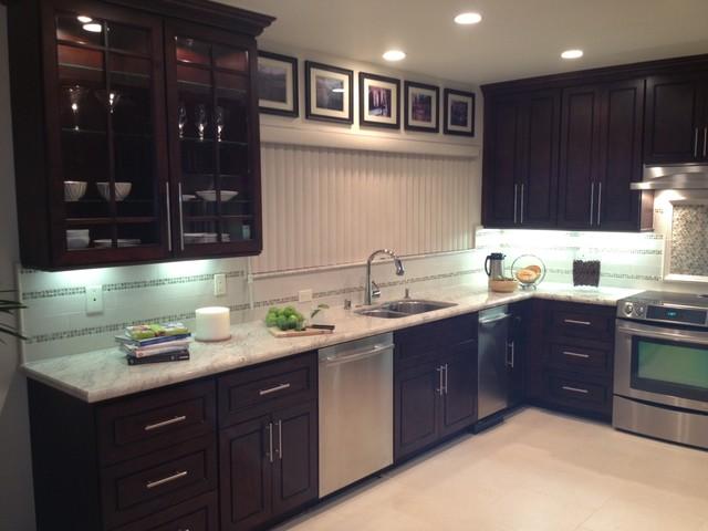 Chocolate Door Style Kitchen  Modern  Kitchen Cabinetry  san diego