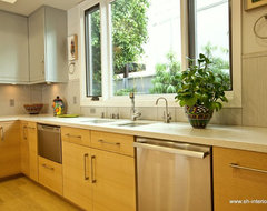Kitchen sink modern kitchen