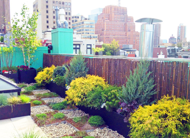 NYC Roof Garden: Paver Deck, Terrace, Sedum Trays, Bamboo Fence, Container Plant - Contemporary ...