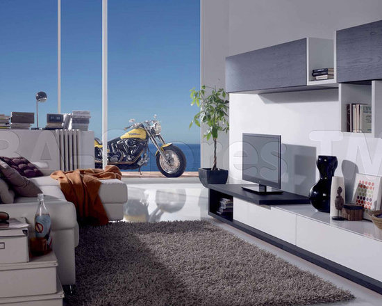 White Silk/Graphite Oak Wall Unit Composition 10.1 - The wonderful Wall Unit Composition 10.1 is for connoisseurs of furniture in modern style! Increase the visual space, with the body of high-quality durable wood materials and veneers in White Silk/Graphite Oak colors.