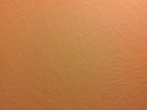 Can I Paint Bold Color On Textured Walls