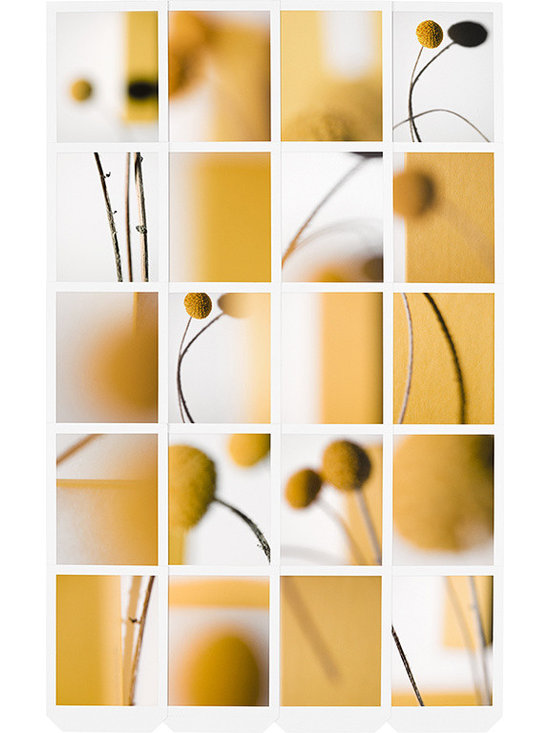 FINE ART PHOTOGRAPHY - ABSTRACT COLOR -