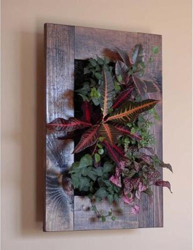 Wall Mounted Living Wall Frame - Walnut - Contemporary - Outdoor Pots And Planters - by Hayneedle
