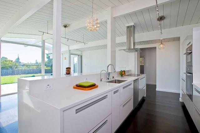 Bunker Hill Eichler modern-kitchen-cabinetry