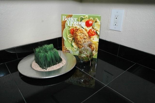 Staged! contemporary-kitchen