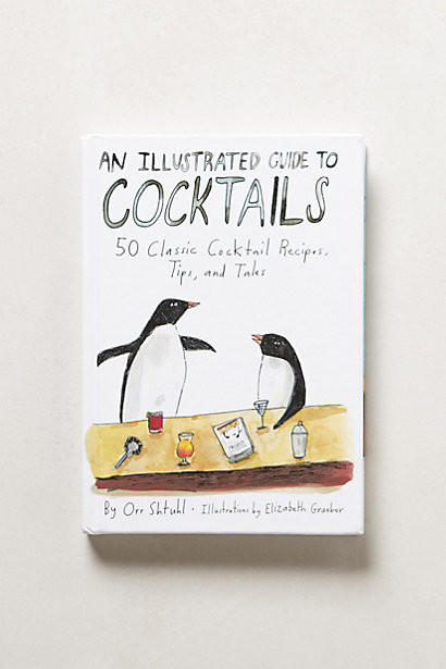 An Illustrated Guide to Cocktails contemporary-books