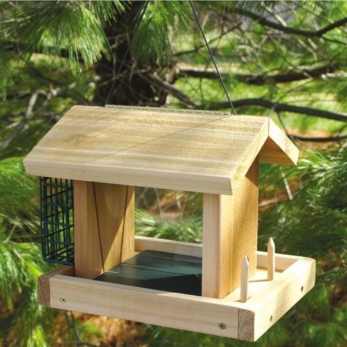 Seed Suet And Fruit Bird Feeder Traditional