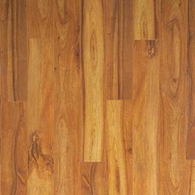 Brazilian Chestnut Hardwood Flooring - Hardwood Flooring - minneapolis ...