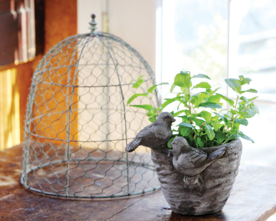 Chicken Wire Cover - An airy dome to place over plants or a fairy garden. Shaped like a bee skep with a dandy little finial on top. A home and garden collection selected that bring happy memories of childhood past. Whether you are looking for period charm, a style of elegant restraint or just want to infuse a spirit of playfulness, you'll find it here.