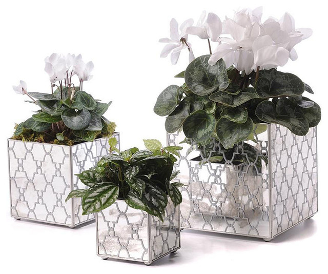 Mirror Orchid Pot Set Jolie Silver Transitional