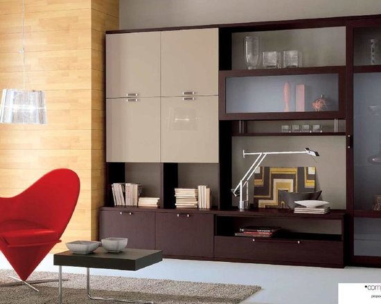 Contemporary Wall Unit Compongo 504W - $2,099.00 - Modern Wall Unit Compogno 504W is in stock in Wenge base / Light Gray front. Mader in Italy by Gruppo Spar.