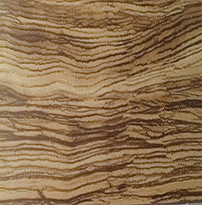 Tavola Zebrano Tile contemporary-wall-and-floor-tile