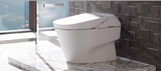 Toto Neorest 700h Elongated Toilet Bidet Ms992cumfg