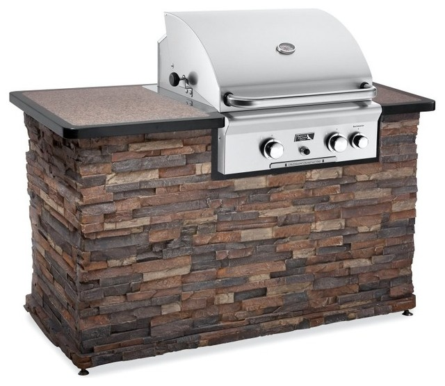 American Outdoor Grill 24 Inch Built-In Gas Grill Multicolor - 24NBT contemporary-outdoor-products
