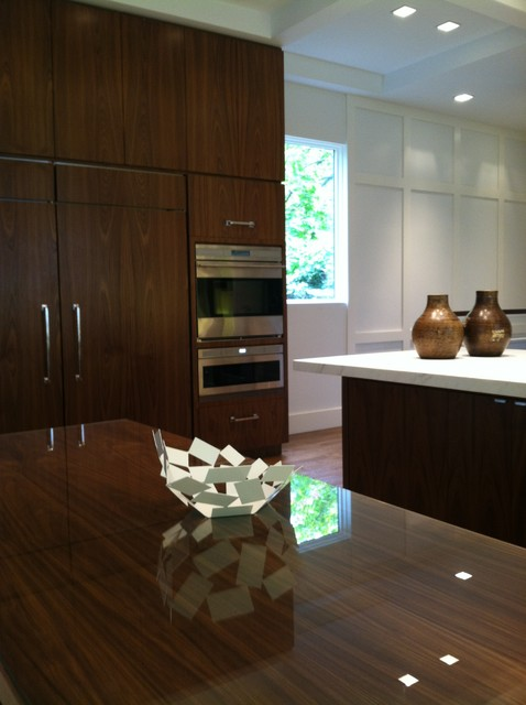 Midwood Manor contemporary-kitchen