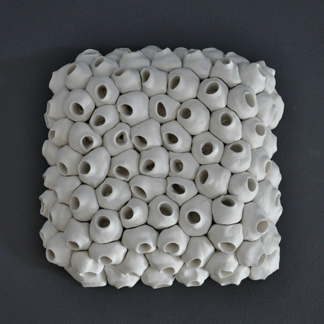 Barnacle Wall Tile