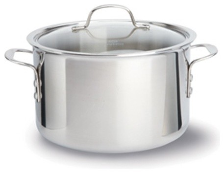 Tri-Ply Stainless Steel 8-qt. Stock Pot with Lid modern-stockpots