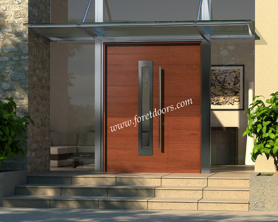 Modern front entry doors / contemporary front entry doors - Solid wood modern entry door with stainless steel insert, glass and stainless steel pull