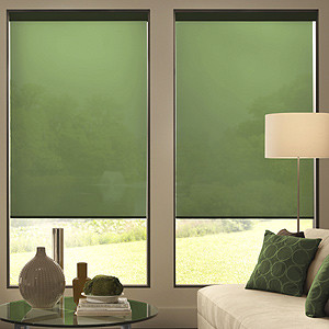Blindsgalore Expressions Roller Shades: Solids contemporary-roller-blinds