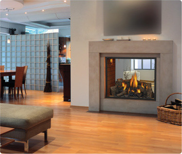 Hd81 See Thru Gas Fireplace Modern Indoor Fireplaces