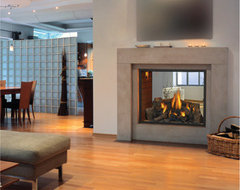 HD81 See-Thru Gas Fireplace modern fireplaces