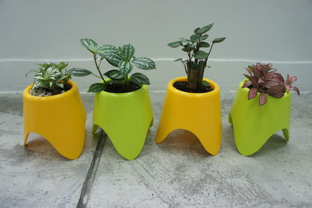 Baby TriPot - Self Watering Planter contemporary-indoor-pots-and-planters