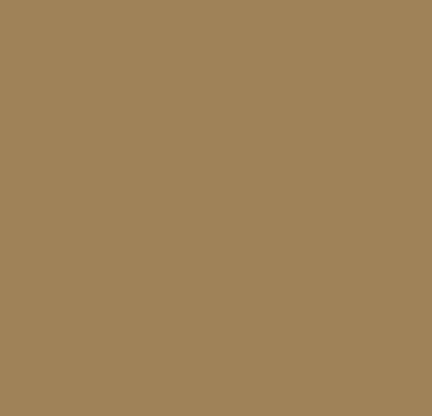 Paint Color 6124 Cardboard paint