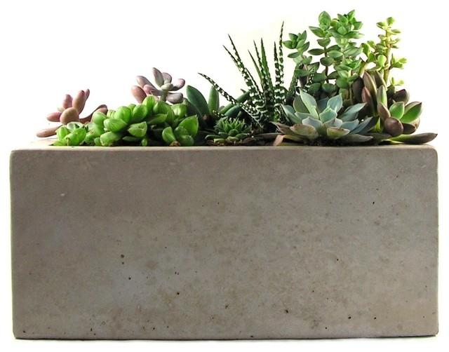 Rectangular Concrete Planter Modern Indoor Pots And