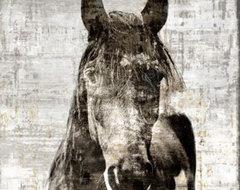 Winter Stallion by Leftbank Art contemporary-artwork