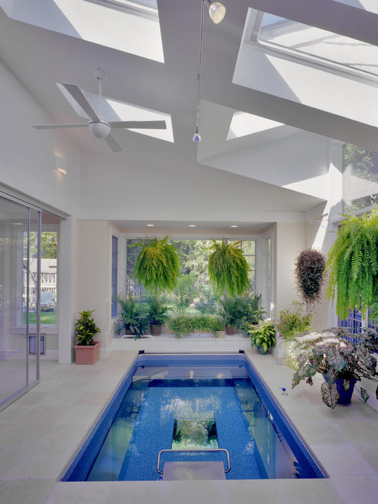 Indoor Endless Pool®, Sunroom - A refreshing, light-filled nirvana. The hanging fronds and variegated leaves integrate the room with the outside foliage, creating an even more expansive feel. The Endless Pool serves as a bold and functional centerpiece.