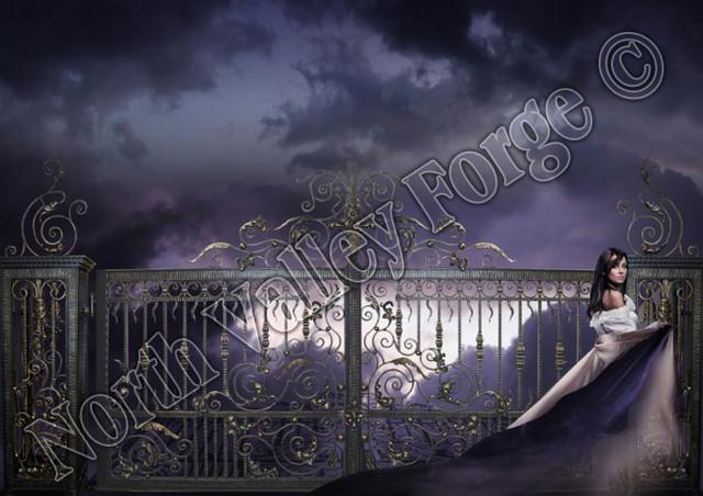 Venus Iron Gate modern-home-fencing-and-gates