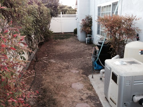 Help narrow side yard landscape ideas needed for Landscaping ideas for side of house