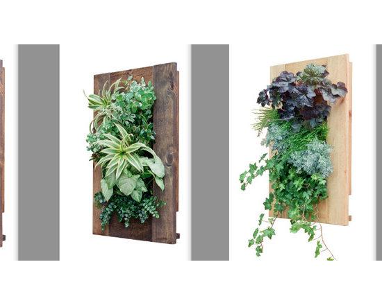New Living Art Frames -