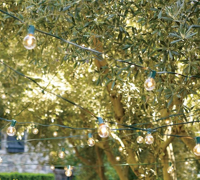 Globe String Lights - Contemporary - Outdoor Rope And String Lights - by Pottery Barn
